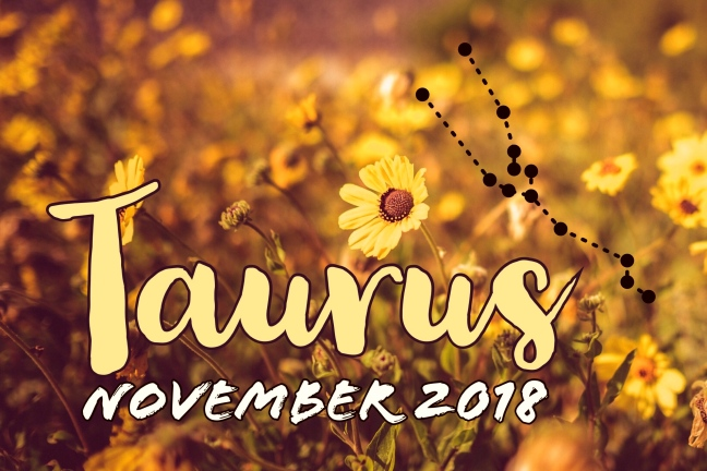 2018-11:Banner:02 Taurus