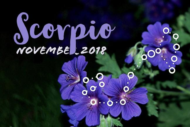 2018-11:Banner:08 Scorpio.jpeg