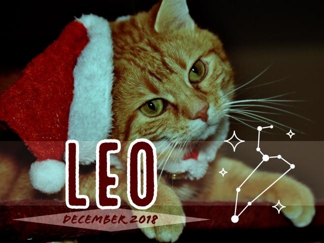 2018-12:Banner:05 Leo.jpeg
