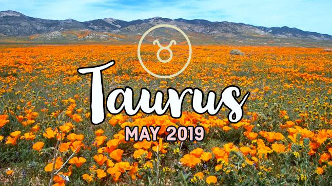 2019-05:Banner:02 Taurus.png