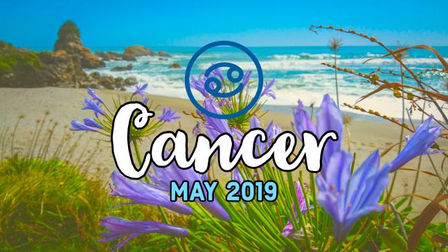 2019-05:Banner:04 Cancer.png