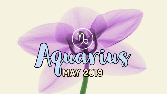 2019-05:Banner:11 Aquarius.png