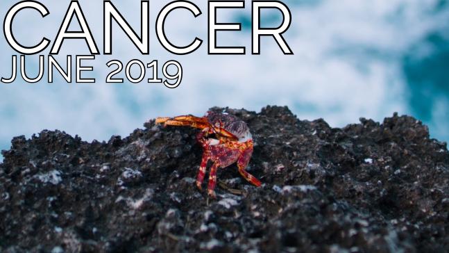 2019-06:Banner:04 Cancer.png