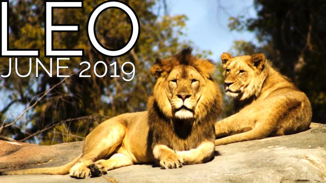 2019-06:Banner:05 Leo.png