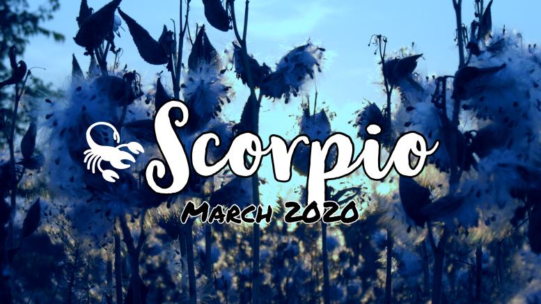 2020 03:Banner:08 Scorpio