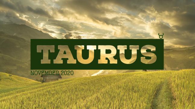 2020 11:Banner:02 Taurus