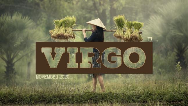 2020 11:Banner:06 Virgo
