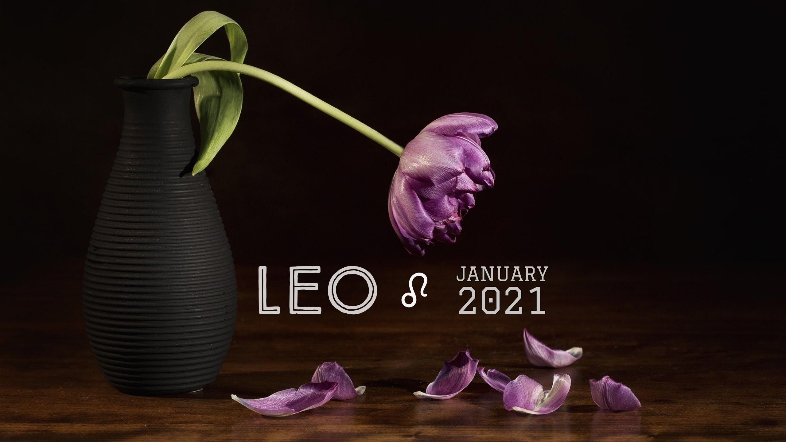2021 01:Banner:05 Leo