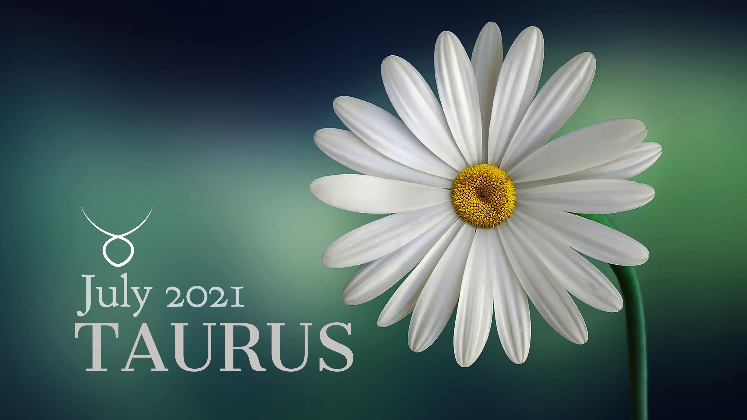 2021 07:Banner:02 Taurus