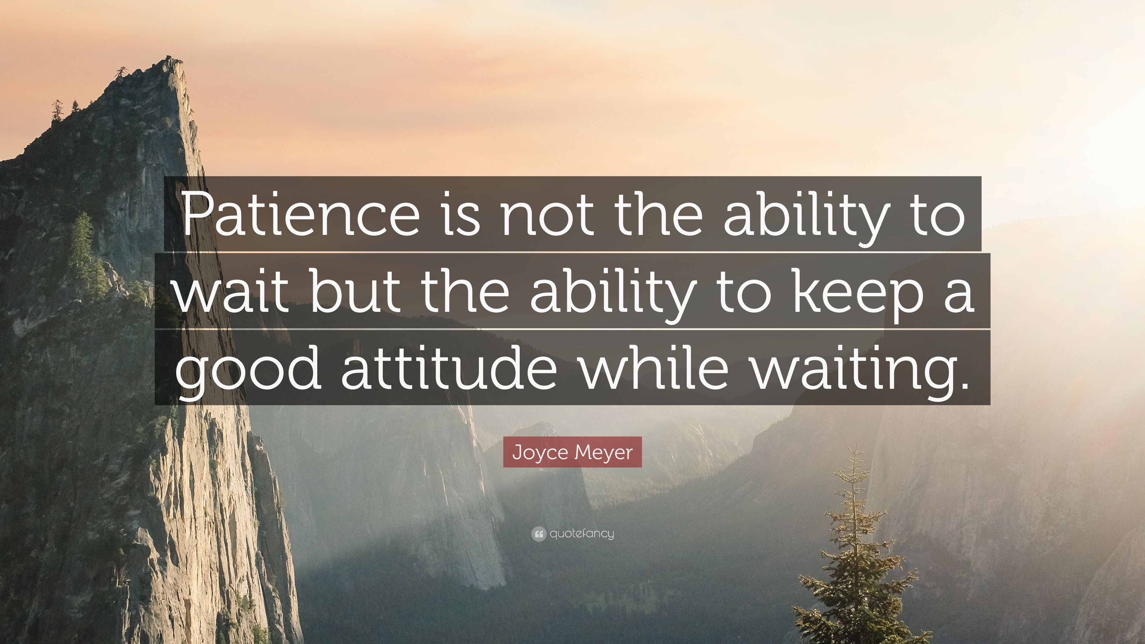17749-Joyce-Meyer-Quote-Patience-is-not-the-ability-to-wait-but-the